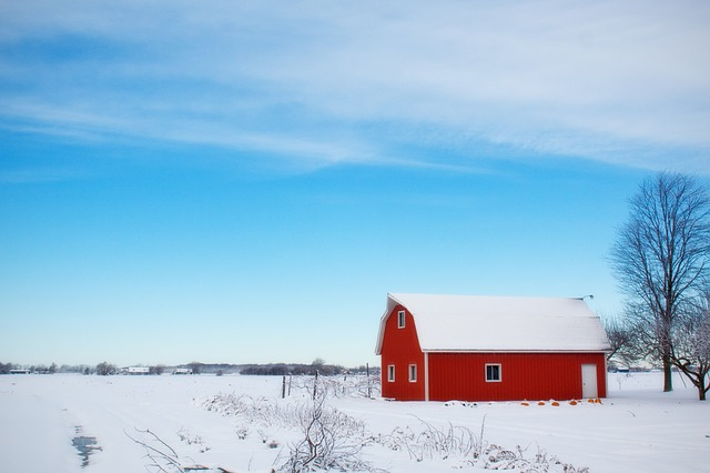 Vinter betyder vila för naturen